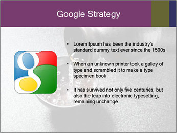 0000094099 PowerPoint Template - Slide 10