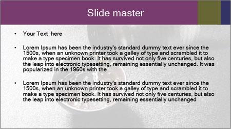 0000094099 PowerPoint Template - Slide 2
