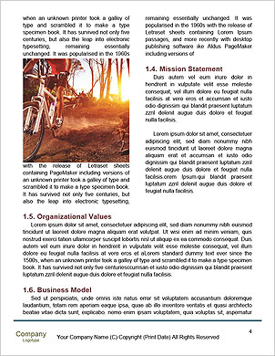 0000094106 Word Template - Page 4