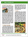0000094111 Word Template - Page 3
