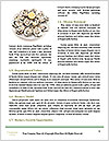 0000094114 Word Templates - Page 4