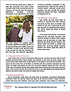 0000094122 Word Templates - Page 4