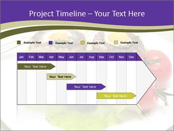 0000094129 PowerPoint Template - Slide 25
