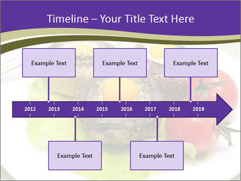 0000094129 PowerPoint Template - Slide 28