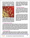 0000094130 Word Templates - Page 4
