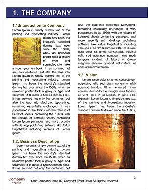 0000094137 Word Template - Page 3
