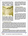 0000094137 Word Template - Page 4