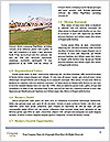 0000094139 Word Template - Page 4