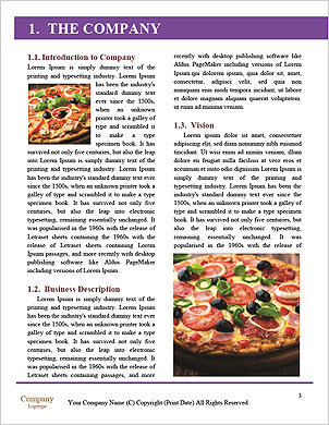 0000094140 Word Template - Page 3