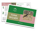 0000094152 Postcard Templates