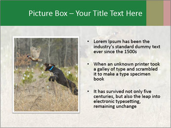 0000094152 PowerPoint Templates - Slide 13