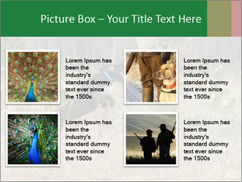 0000094152 PowerPoint Templates - Slide 14