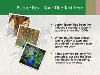 0000094152 PowerPoint Templates - Slide 17