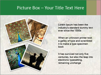 0000094152 PowerPoint Templates - Slide 23