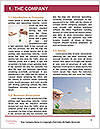 0000094155 Word Template - Page 3