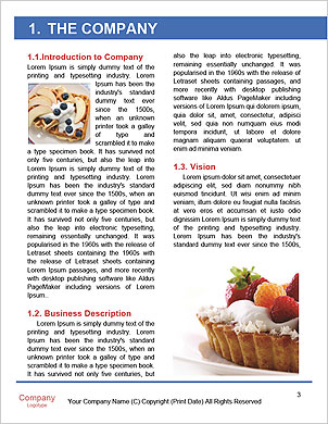 0000094158 Word Template - Page 3