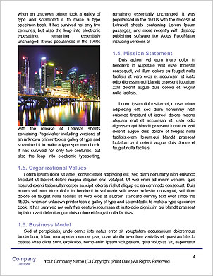 0000094162 Word Template - Page 4