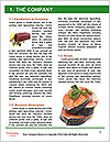0000094163 Word Templates - Page 3