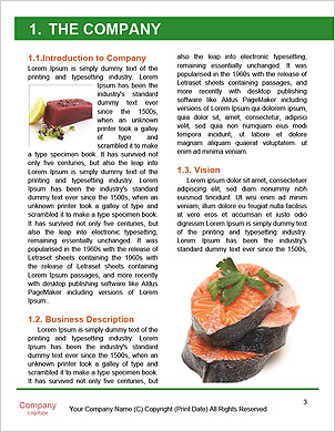 0000094163 Word Template - Page 3