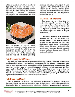 0000094163 Word Template - Page 4
