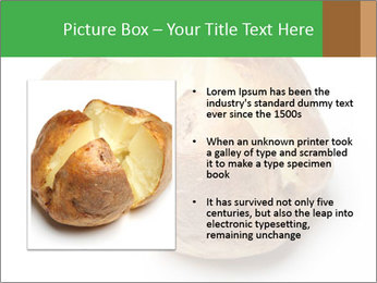 0000094166 PowerPoint Templates - Slide 13