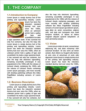 0000094166 Word Template - Page 3