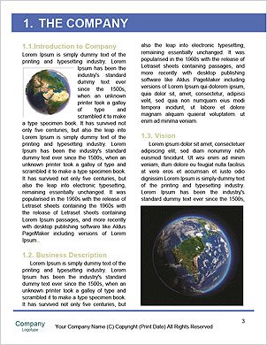 0000094174 Word Template - Page 3