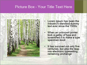 0000094175 PowerPoint Templates - Slide 13