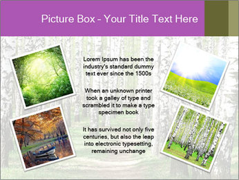 0000094175 PowerPoint Templates - Slide 24