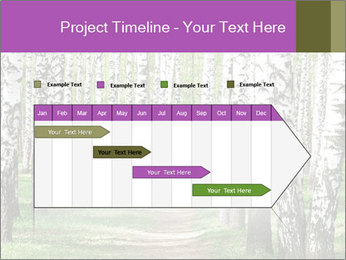 0000094175 PowerPoint Templates - Slide 25