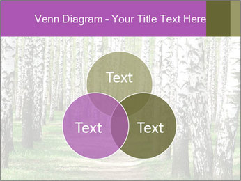 0000094175 PowerPoint Templates - Slide 33