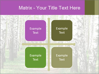 0000094175 PowerPoint Templates - Slide 37