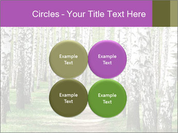 0000094175 PowerPoint Templates - Slide 38