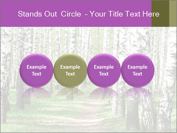 0000094175 PowerPoint Templates - Slide 76