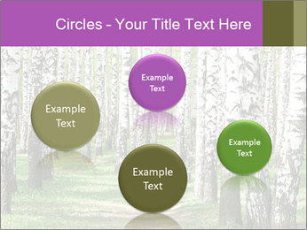 0000094175 PowerPoint Templates - Slide 77
