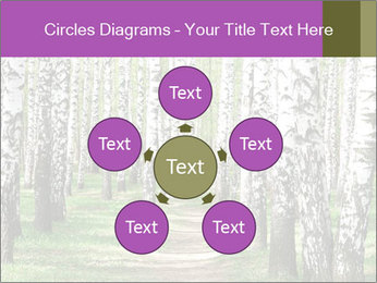 0000094175 PowerPoint Templates - Slide 78