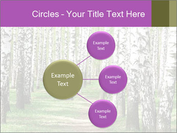 0000094175 PowerPoint Templates - Slide 79