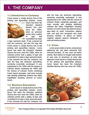 0000094178 Word Template - Page 3