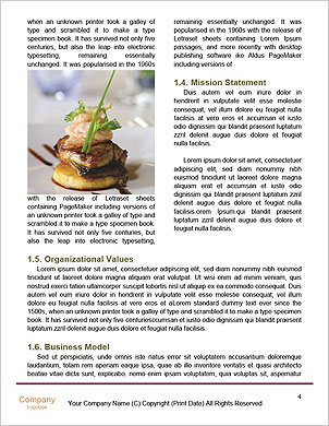 0000094178 Word Template - Page 4