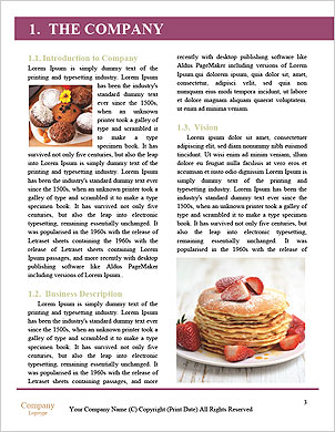 0000094183 Word Template - Page 3