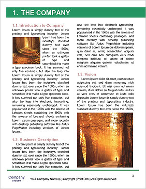 0000094184 Word Template - Page 3