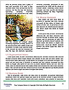 0000094184 Word Templates - Page 4