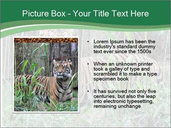 0000094187 PowerPoint Templates - Slide 13