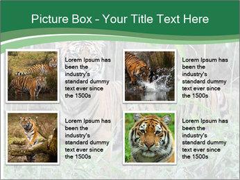 0000094187 PowerPoint Templates - Slide 14