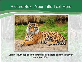 0000094187 PowerPoint Template - Slide 15