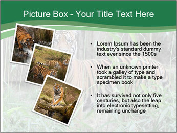 0000094187 PowerPoint Templates - Slide 17