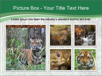 0000094187 PowerPoint Template - Slide 19