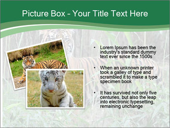 0000094187 PowerPoint Templates - Slide 20