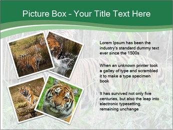 0000094187 PowerPoint Templates - Slide 23