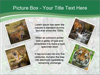 0000094187 PowerPoint Templates - Slide 24
